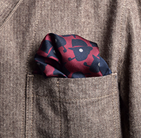 Scatter chap Pocket Square